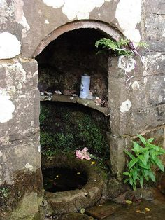 In a field by the road to Tintern just outside the Monmouthshire village of Trellech, the Virtuous Well, also known as St Ann's Well, is reputed to be at the meeting point of four springs. Its waters are said to help in curing problems of the eyes and 'ailments peculiar to women'.   Wales