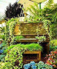 Old piano garden  #garden