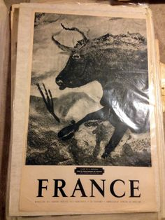 Cave Drawings, Travel Posters, Moose Art, France, Animals, Animales, Animaux, Animal, Animais