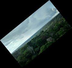 Reserva Duque-Amazonas