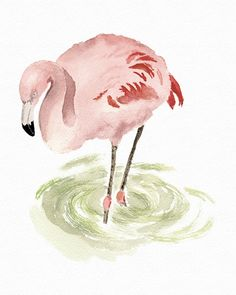 Pink Flamingo Print from Original Watercolor, Pink Flamingo in a Pale Green Pond, Flamingo Wall Art Home Decor, Children's Room Pink Decor on Etsy, $14.00
