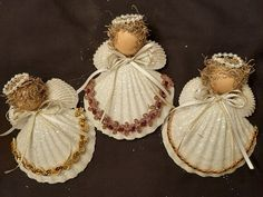 Christmas Angels - Scallop Shell Angels - Beach Ornaments - Set Of 3
