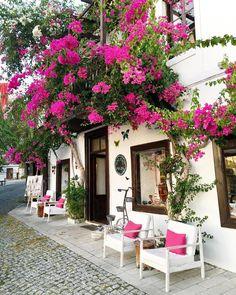 Bougainvillea, Beautiful Places To Travel, Wonderful Places, Beautiful Gardens, Beautiful Homes, Places Around The World, Around The Worlds, Greek Decor, Antalya