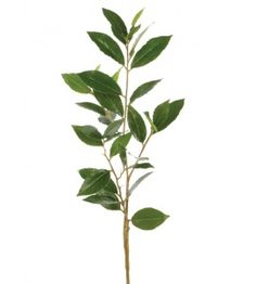 Deluxe Bay Laurel Spray -80cm