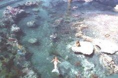 Disneyland Mermaids 1960's