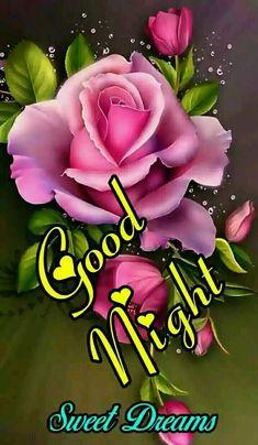 Good Night Cards, Good Night Love Quotes, Good Night Messages, Good Night Blessings, Good Night Wishes, Good Night Sweet Dreams, Evening Greetings, Good Morning Greetings, Good Night Flowers