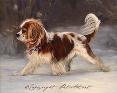 Cavalier King Charles Spaniel pet portrait