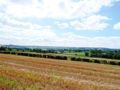 My local walks from Peasedown St John, Bath to over the fields looking at White Ox Mead and Dunkerton Valleys. Love the colors ; Coal Mining, Mead, Ox, Somerset, Walks, Fields, England, Bath, Colors