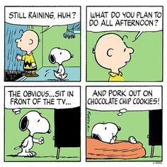 Cookie philosophy
