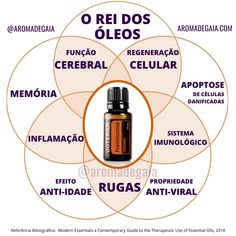 Herbalism, Essential Oils, Therapy, Skin Care, Wicca, Healthy, Essential Oil Blends, Doterra Essential Oils, Skin Anatomy