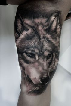 28 Best Blogspot 3d Wolf Tattoo Images Animal Tattoos Ink Male