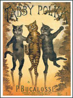 Tabby Polka...  (Music sheet).