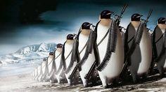 Penguins War Background Paper Images : Full HD desktop wallpaper ...