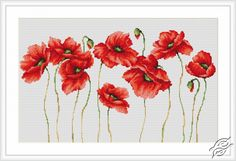 Poppies - Cross Stitch Kits by Luca-S - B2223