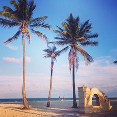 Palms at Hollywood Florida