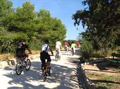 Athens bicycle ride Excursions in Athens  #greece #greekislands #excursion #thingstodo #justbookexcursions #athens