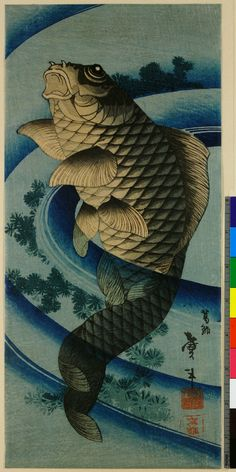 Carp swimming upwards through the centre of a whirlpool / Taito II  鯉図 二代目葛飾戴斗 1810~1853年頃  ※張交絵の一部?