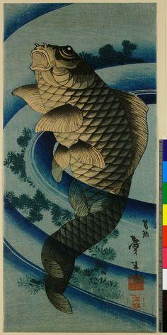 Carp swimming upwards through the centre of a whirlpool / Taito II  鯉図 二代目葛飾戴斗 1810~1853年頃  ※張交絵の一部?