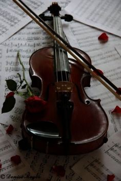 I tried playing the violin but I was told it sounded like a cat scratching a chalkboard. It is more a decoration now.