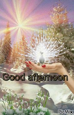 Happy Good Morning Images, Good Morning My Friend, Good Afternoon Quotes, Galaxy Phone Wallpaper, Create Animation, Photomontage, Wallpapers, Pictures, Beautiful