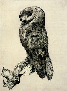 Van Gogh barn owl sketch