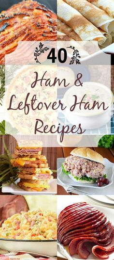 40 Ham and Leftover Ham Recipes from Noshing With The Nolands - Don't know what to do with all that leftover ham? Come check out all these recipes that are perfect for spring and Easter! (Easy to make most gf) Leftover Ham Recipes, Leftovers Recipes, Leftover Turkey, Recipes Dinner, Breakfast Recipes, Thanksgiving Recipes, Holiday Recipes, Easter Recipes, Christmas Recipes