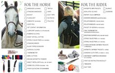 Noble Equine: DIY basic first aid kit and essentials for horse owners