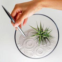 Мастер-класс и фотографии как сделать мини сад дзен своими руками.