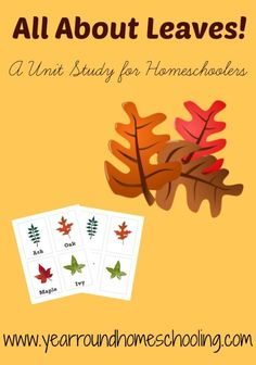 Free Homeschool Unit Study: All About Leaves