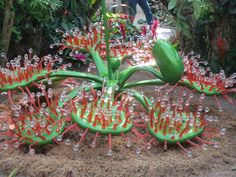 Sundew drosera sculpture Savage Gardens exhibit carnivorous plants San Antonio Botanical Garden Texas