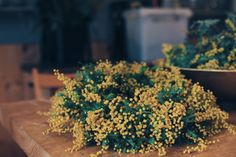 Wedding Bouquets, Floral, Plants, Bridal Bouquets, Wedding Brooch Bouquets, Wedding Bouquet, Wedding Flowers, Plant, Flowers