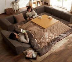 Magic Of Kotatsu | The Table You Can Sleep Under | Lazy Penguins