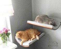 cat accessories cat shelves cat furniture pet design cat bed grey cat bed maplewalnut and wenge shade of wood cappuccino fabric – Wood Design - Cats Cats Space Cat, Cat Gifts, Cat Lover Gifts, Gifts For Cats, Cat Lovers, Gatos Cool, Cat Perch, Pet Furniture, Modern Cat Furniture