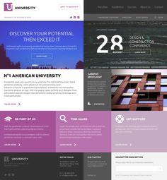 American University by Serge Mistyukevych, via Behance