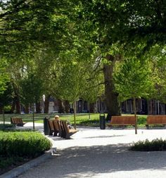 PLANTAGE Schiedam, Zuid - Holland Nederland