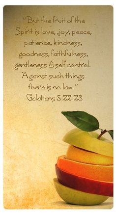 """""""But the fruit of the spirit is love, joy, peace, longsuffering, gentleness, goodnes, faith, meekness, and temperance, against such there is no law."""" ~ Galatians 5: 22 - 23"""