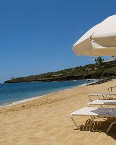 Four Seasons resort Lanai one of the best snorkeling of our Honeymoon!!! Beautiful!