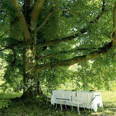 Une salle à manger sous les arbres