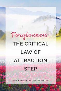 Many talk about forgiveness being an important step to creating the life we what. But, an even more important step is self forgiveness. Click through to discover why. Kindness Activities, Law Of Attraction Money, Manifesting Money, True Happiness, Finding Love, How To Manifest, Forgiving Yourself, Spiritual Awakening, Self Improvement