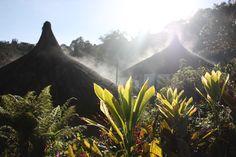 Dawn at Ambua Lodge, Hela Province. Papua New Guinea.