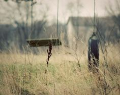Country Life Photograph swings field grasses by FirstLightPhoto,