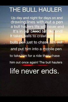 Bull Hauler: Bull Racks, Cattle Trucks, Bull Haulers, Bull Wagons, Haulers Life,