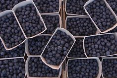 Blueberries are full of anti-oxidants.