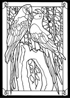 Two African Grey Parrots Coloring Page