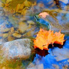 23 Best The Ozark Mountains Images Branson Missouri
