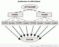DDos Attack: Working and Protection http://www.blockdos.net/