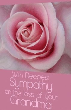 Sympathy Quotes For Loss, Sympathy Messages, Sympathy Cards, Greeting Cards, Confirmation Cards, Loss Of Mother, Deepest Sympathy, Pink Rose Flower, Paper Texture