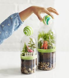 This easy terrarium shows kids the water cycle in action.