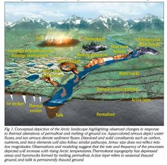 Arctic Landscapes in Transition: Responses to Thawing Permafrost