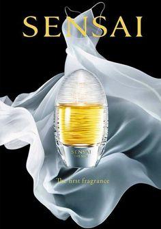BEM-VINDO AO E.S.P FASHION BLOG BRASIL: Sensai The Silk